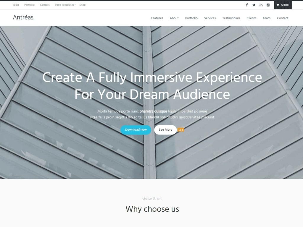 Antreas WordPress Theme